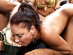 Vanessa Videl and Zoe Matthews in Strap on milf hookers scene 3