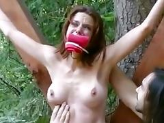 free BDSM porn tube