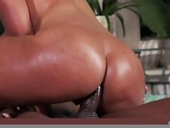 All, Anal, Ass, Assfucking, Big Ass, Big Cock