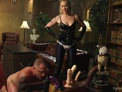 All, Blonde, Femdom, MILF, Strapon, Tied Up