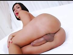 Ts sabrina suzuki  killer curves fat cock  solo