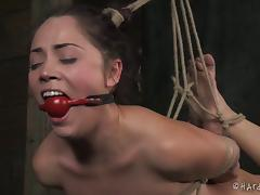 All, BDSM, Bondage, Fetish, Punishment, Slave