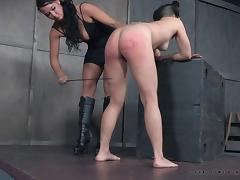 Ruthless BDSM treatment for an Asian babe with pigtails