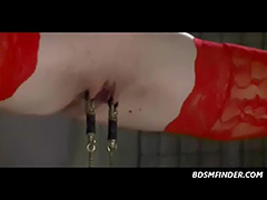Suspension And Pussy Clamps