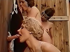 Danish Gloryhole Girls 1970s 1970 porn video