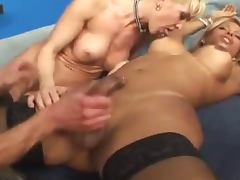 Two adorable transsexual hotties fucking a guy on a bed
