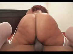 Gina DePalma Interracial Fucking