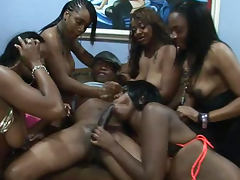 Ebony Brown Suga is sucking tasty black dick