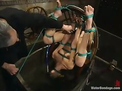 All, BDSM, Bondage, Jail, Prison, Pussy