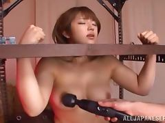 BDSM video with luscious Japanese girl getting toyed
