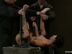 All, BDSM, Bondage, Bound, Hogtied