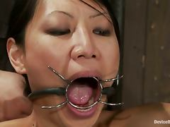 All, Asian, BDSM, Bound, Hogtied