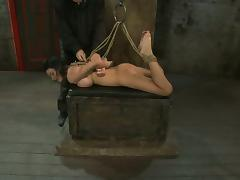 All, BDSM, Bondage, Brunette, Toys
