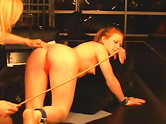 Milf lesbians Madison Young and Nina Hartley enjoy playing