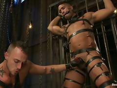 BDSM Gay Porn Video with Submissive Cock Sucker Fucked