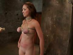 Vixen gives a blowjob with a breast bondage