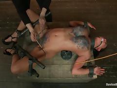 All, BDSM, Bondage, Femdom, Fetish, Spanking