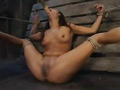 All, BDSM, Bondage, Choking, Gagging, Humiliation