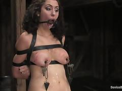 Bondage, BDSM, Bondage, Bound, Fetish, Sex