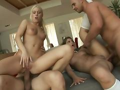 4some, Anal, Babe, Blowjob, Cumshot, Foursome