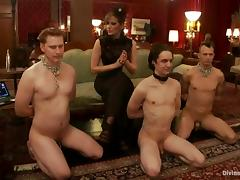 Poor guys get their dicks tortured by nasty mistresses porn video