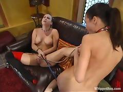free Bondage porn tube