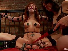 Bondage, BDSM, Bondage, Femdom, Horny, Naughty