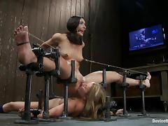 Wenona and Jessie Cox get tormented by Isis Love in stunning BDSM scene