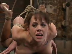 Hog tied Chanel Preston gets toyed and face fucked