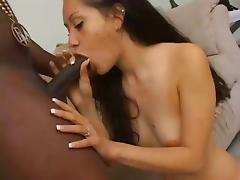 Sexy Amateur Latina Slut Priscilla Get Black Cock