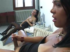Brunette chick in pantyhose gets fucked by a tranny
