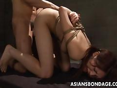 Bound pigtailed Japanese chick blows and gets fucked from behind