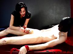 Blazing brunette delivering a terrifying torture to a helpless dude in bondage with a small cock